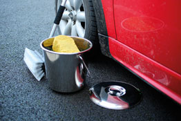 Stainless Steel Lid for Bucket in use